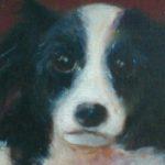Suske hondportret, olie linnen, 24x30cm, 2002- detail